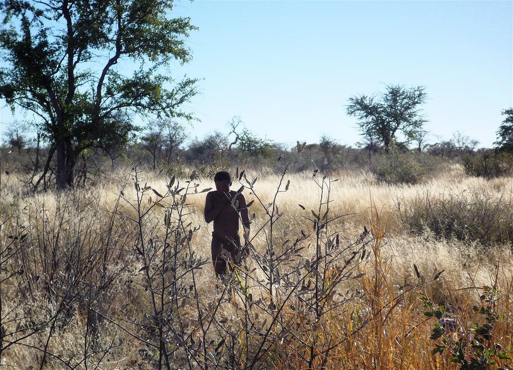 Bushmanland aneb země Křováků