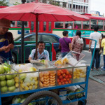 Čerstvé ovoce kdykoliv a levně