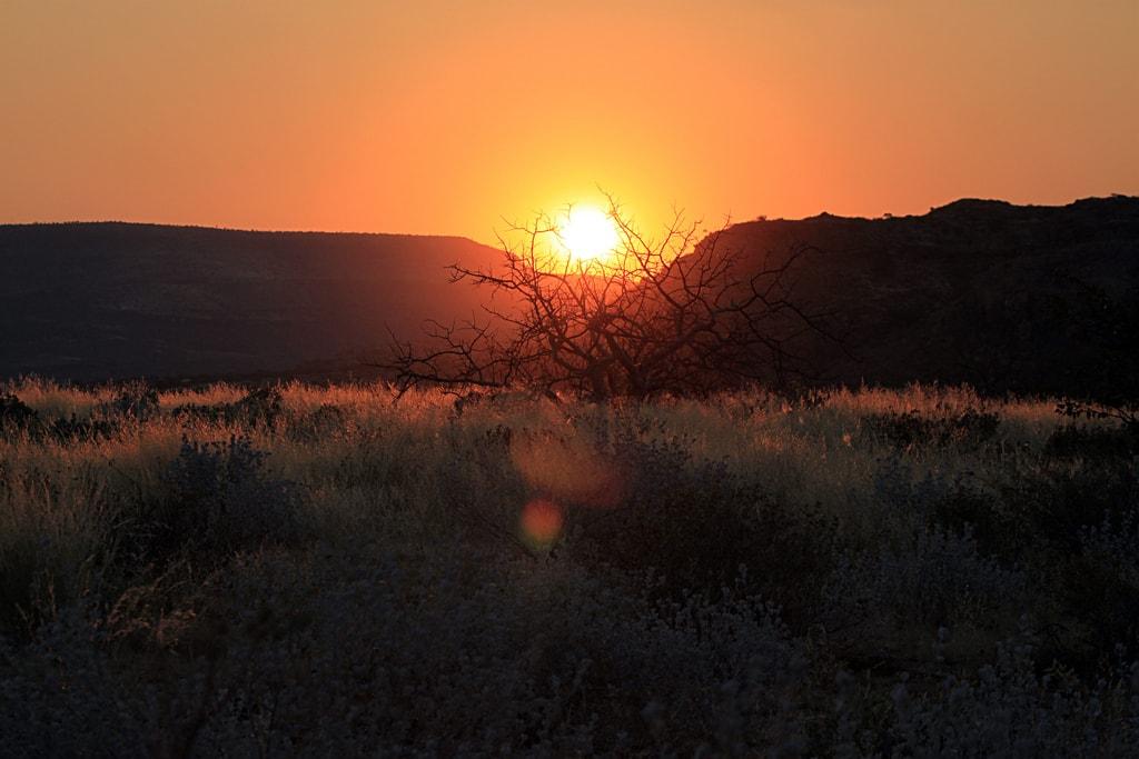 Západy slunce v savaně mají zkrátka své kouzlo