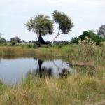 Národní park Nkasa Rupara