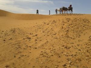 Naše karavana