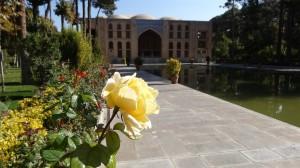 Růže v Chehel Sotun
