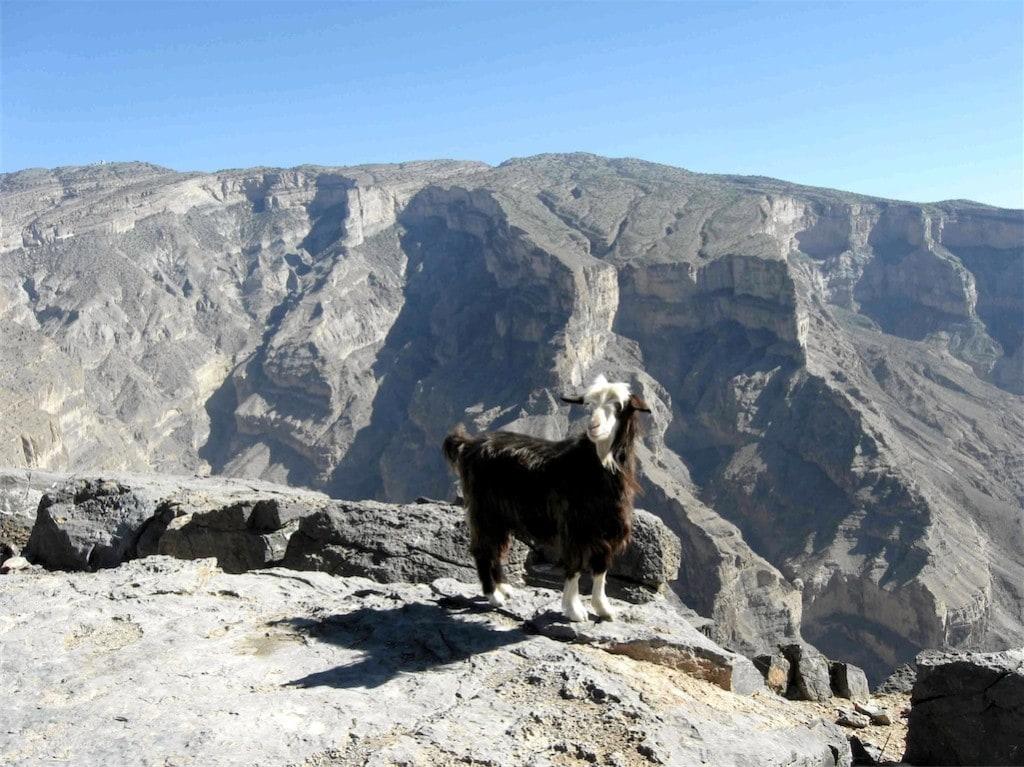 Grand kaňon Arabského poloostrova, tak se přezdívá Jebel Shams