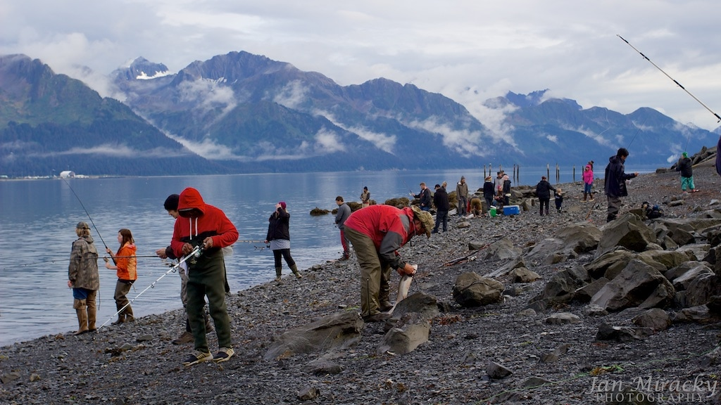 People fishing salmon in Resurrection Bay in Seward