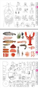 icoon-bildwoerterbuch-symbole