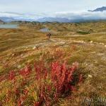 Náš nejhezčí aljašský trek k Lost lake