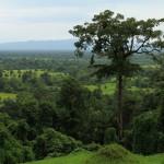 Krajina Laosu v okolí města Pakse