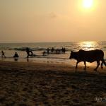 Dobrodružně za barmským mořem