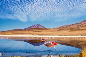 Expedice Bolívie - červenec 2020