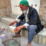 Děda prodává osudy - Expedice Írán 2016