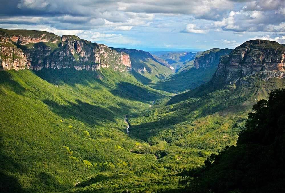 Deštný prales v údolí do Pati