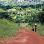 Typická africká lateritová cesta (foto: Hugo a Caro Minaar)