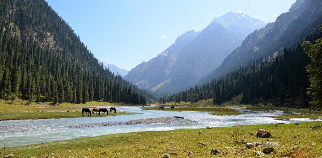 "Údolí Karakolu - Kyrgyzstán (<a href=""https://flic.kr/p/fCagjG"" target=""_blank"">Horses the mighty Tian Shan Mountains</a> od <a href=""https://www.flickr.com/photos/stupid_dream/"" target=""_blank"">Prashant Ram</a> / <a href=""https://creativecommons.org/licenses/by-nd/2.0/"" target=""_blank"">CC BY-ND 2.0</a>)"