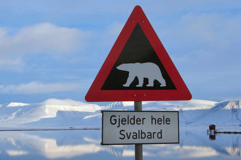 """Známá dopravní značka """"Bacha na lední medvědy, platí po celých Špicberkách"""""""