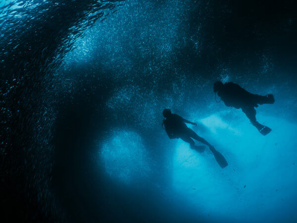 My a kolem nás miliony rybiček