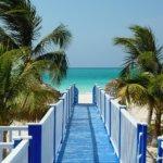 Kuba je proslulá nádhernými plážemi, na kterých si zaslouženě odpočineme a ochutnáme vodu z čerstvě utrženého kokosu