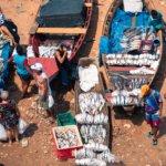 Rybí trh na břehu řeky Rio Negro