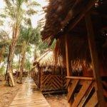 Domečky pro ubytování v lodgi v pralese