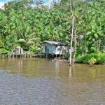 Výhled na obydlí cestou po Amazoce