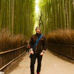 Bambusový háj, Nara, Japonsko