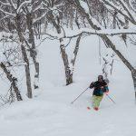 Lyžování na Hokkaidu, Japonsko