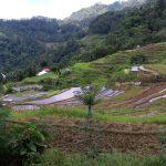 Kulturní krajina Tana Toraja