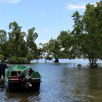 Ústí Kali Biru do moře je domovem brakických rybek